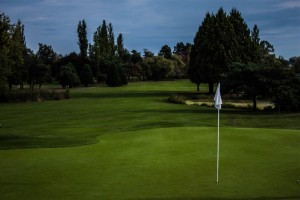 Surrey-Golf-Club-(11)