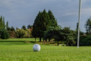 Surrey-Golf-Club-(14)
