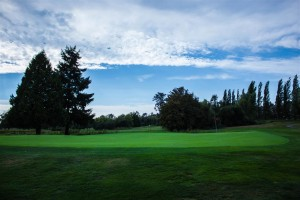 Surrey-Golf-Club-(25)