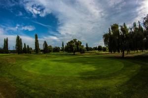Surrey-Golf-Club-(26)