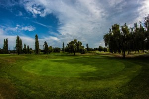 Surrey-Golf-Club-(26)
