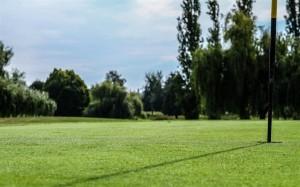 Surrey-Golf-Club-(31)