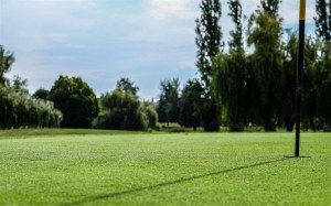 Surrey-Golf-Club-(31)