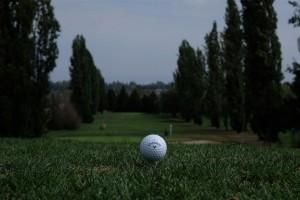 Surrey-Golf-Club-(36)