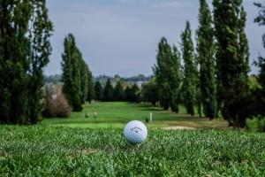 Surrey-Golf-Club-(37)