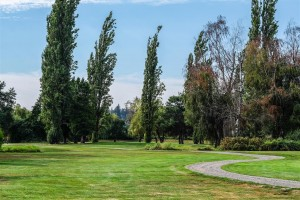 Surrey-Golf-Club-(43)