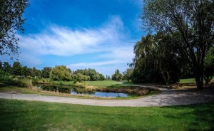 Surrey-Golf-Club-(44)
