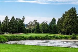 Surrey-Golf-Club-(49)