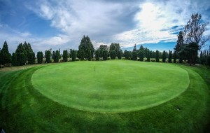 Surrey-Golf-Club-(53)