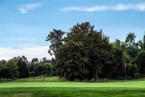 Surrey-Golf-Club-(55)
