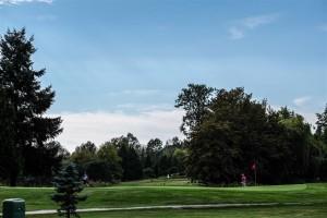 Surrey-Golf-Club-(56)