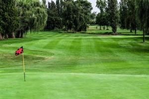 Surrey-Golf-Club-(58)