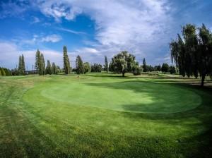 Surrey-Golf-Club-(59)