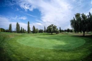 Surrey-Golf-Club-(60)