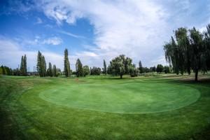 Surrey-Golf-Club-(61)