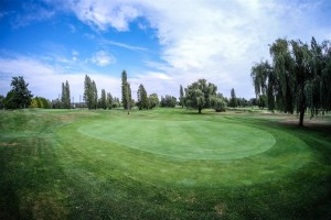 Surrey-Golf-Club-(62)