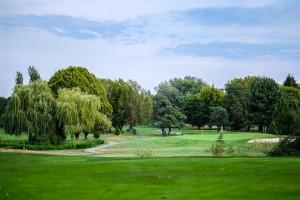 Surrey-Golf-Club-(63)