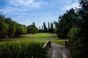 Surrey-Golf-Club-(7)