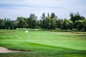 Surrey-Golf-Club-(70)