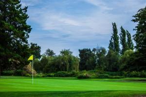 Surrey-Golf-Club-(24)